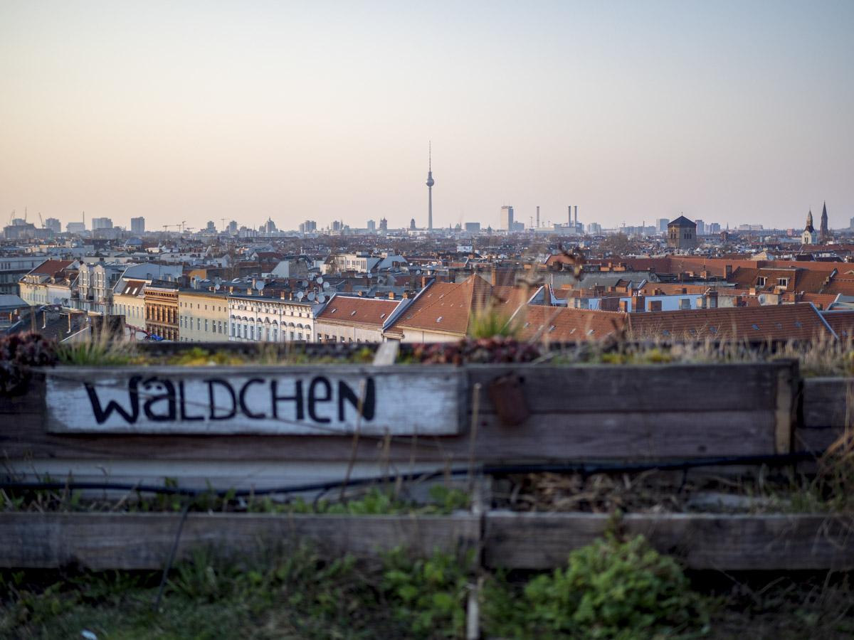 Klunkerkranich Der Kulturdachgarten über Neukölln